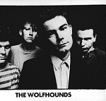 CPP - The Wolfhounds - I See You